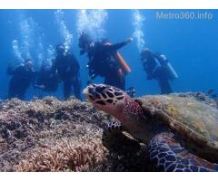 Safe and Fun Anilao Diving Vacation Getaway